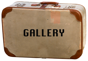 button to get to gallery page
